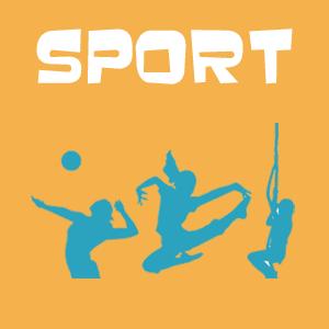 Sport et disciplines sportives